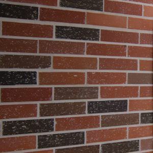 Estoraques Clay Veneer Brick
